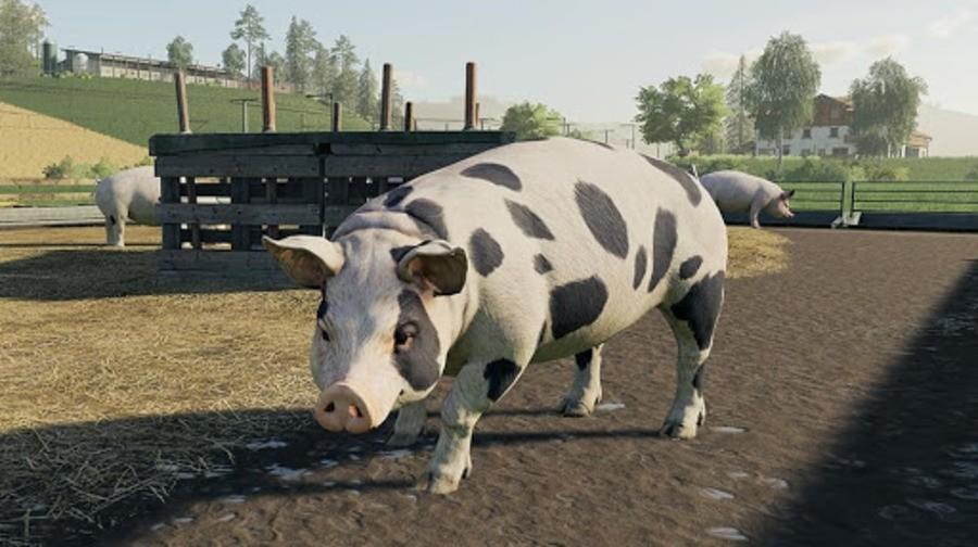 Farming Simulator 19 PS4 PlayStation 4 1