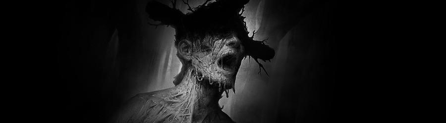 Darkwood (PS4)