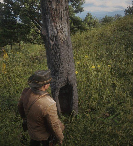 Red Dead Redemption 2 Poisonous Trail Treasure Map Locations 4