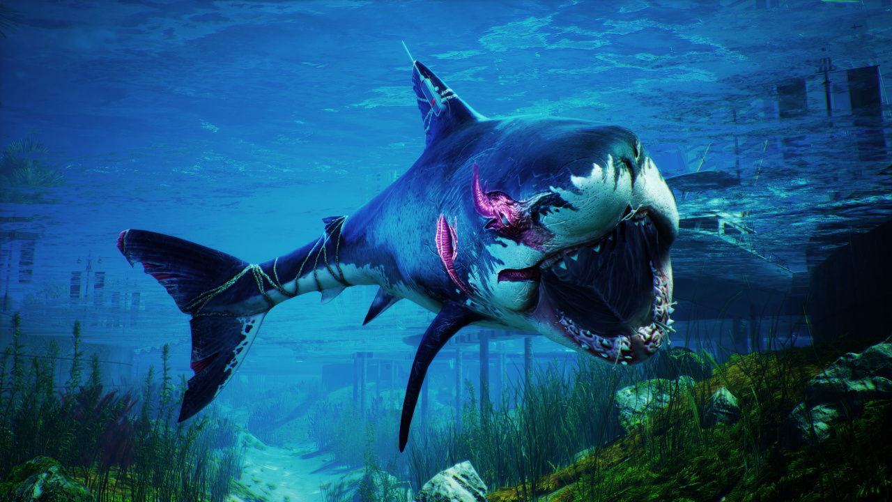 Shark Sim Maneater Is Swimming onto PS5, Free Upgrade for PS4 Players