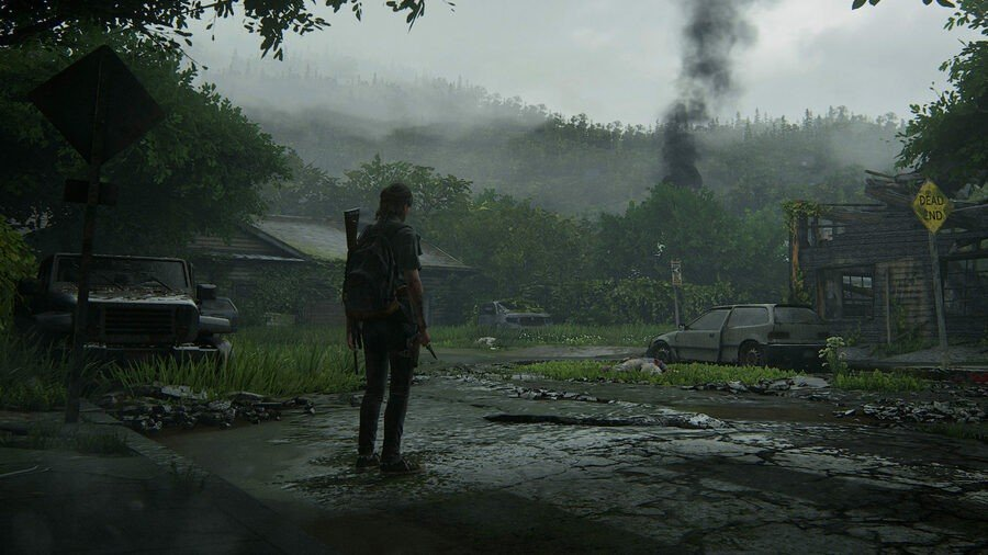 The Last of Us 2 Multiplayer