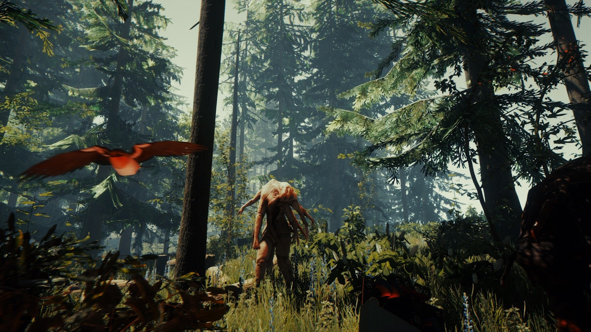 Get Lost in the Woods When The Forest Launches on PS4 in ...