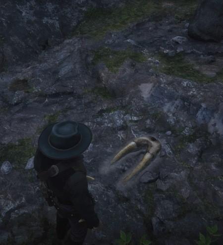 Red Dead Redemption 2 Dinosaur Bones Locations Guide 14