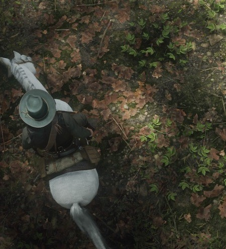 Red Dead Redemption 2 Dinosaur Bones Locations Guide 16
