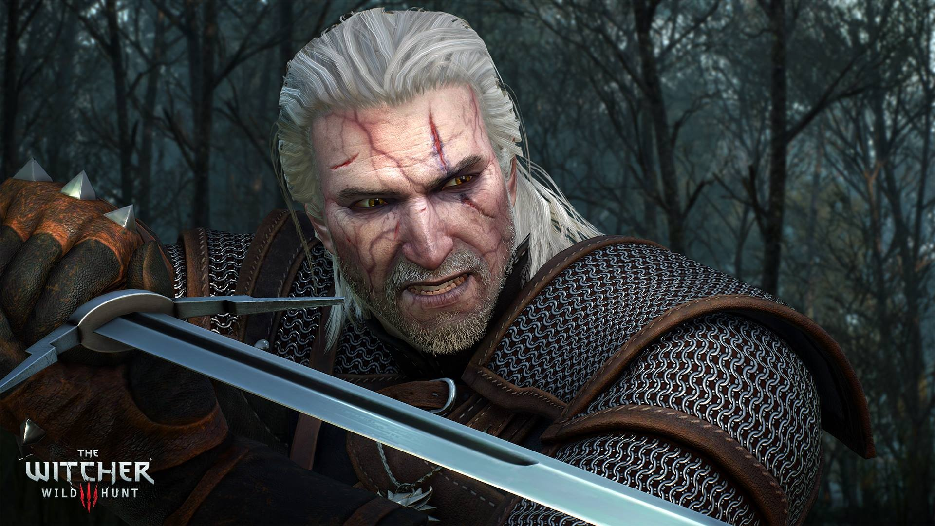 The Witcher 3 Blood And Wine Mutation Character Builds