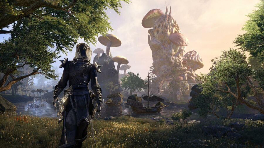 The Elder Scrolls Online PS4 PlayStation 4