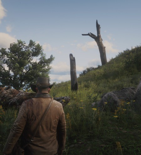 Red Dead Redemption 2 Poisonous Trail Treasure Map Locations 5