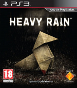 Heavy Rain Cover (Click to enlarge)