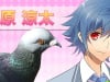 Pigeon Dating Sim Hatoful Boyfriend Flaps onto PS4 and Vita Next Year