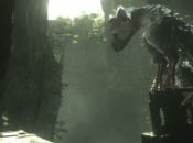 Sony Says The Last Guardian Is Still in Development