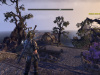 How Does The Elder Scrolls Online Beta Look and Run on PS4?