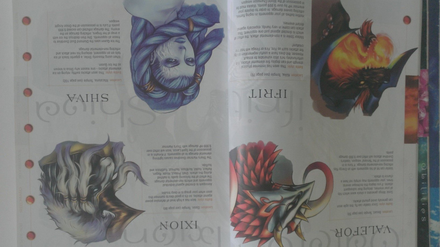 Final Fantasy X's strategy guide has plenty of pretty pictures
