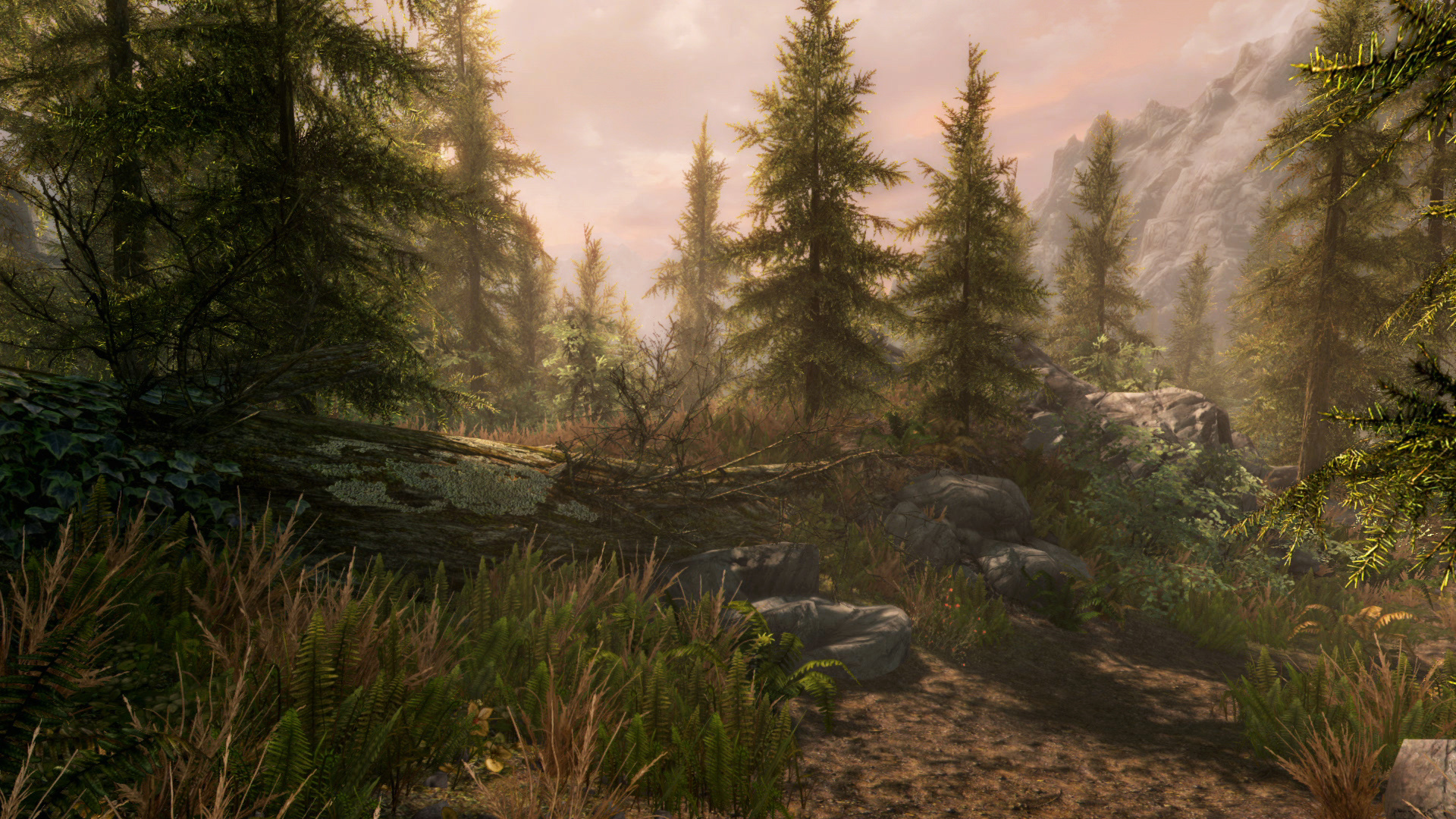 Skyrim - Special Edition ile ilgili görsel sonucu