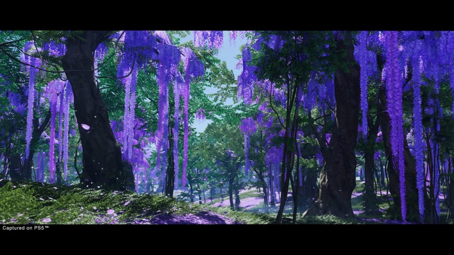 Ghost of Tsushima: Director's Cut Review - Screenshot 1 of 3