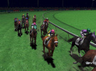 Champion Jockey Screenshot
