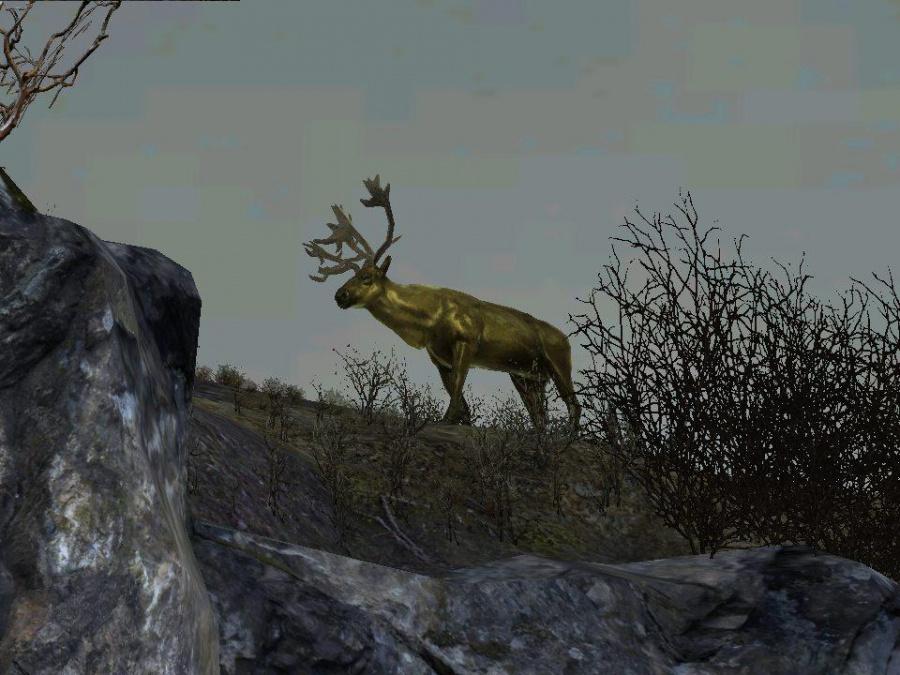 Cabela's ® Big Game Hunter ™ 2012 Game | PS3 - PlayStation