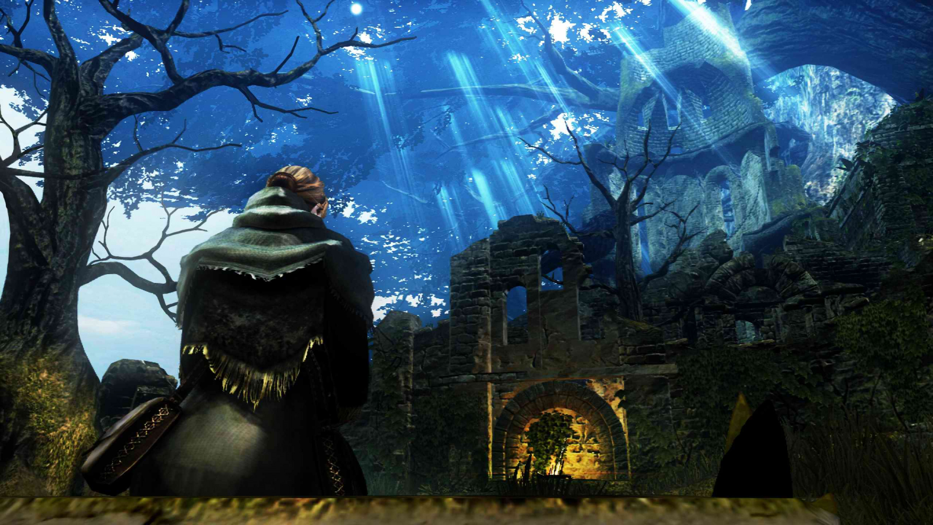 Dark Souls (PS3 / PlayStation 3) Game Profile | News ...