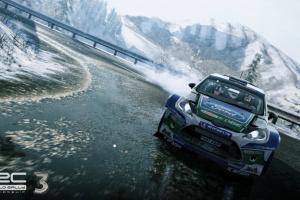 WRC 3: FIA World Rally Championship Screenshot