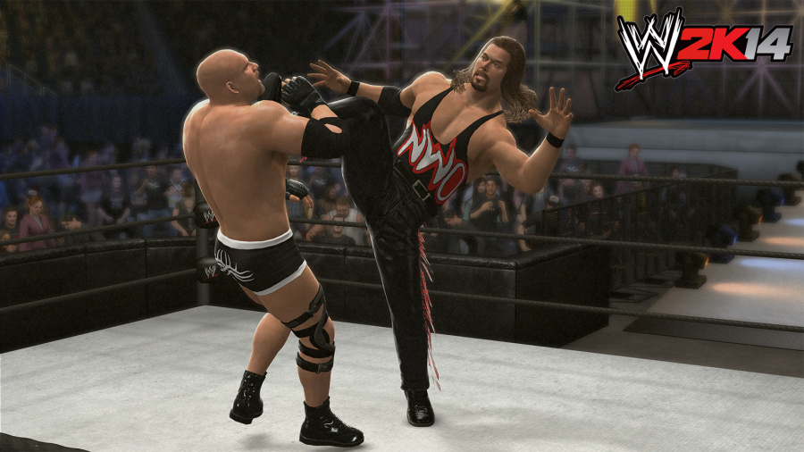 WWE 2K14 Review - Screenshot 5 of 7