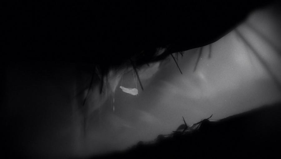Limbo Review - Screenshot 1 of 2