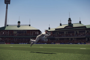 Don Bradman Cricket Screenshot