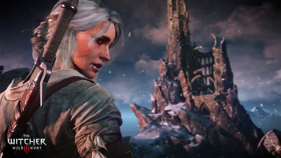The Witcher 3: Wild Hunt Review - Screenshot 9 of 12