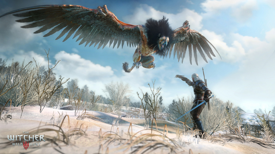 The Witcher 3: Wild Hunt Review - Screenshot 1 of 11