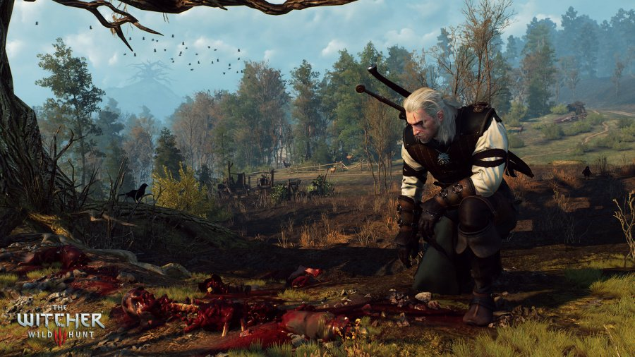 The Witcher 3: Wild Hunt Review - Screenshot 10 of 12
