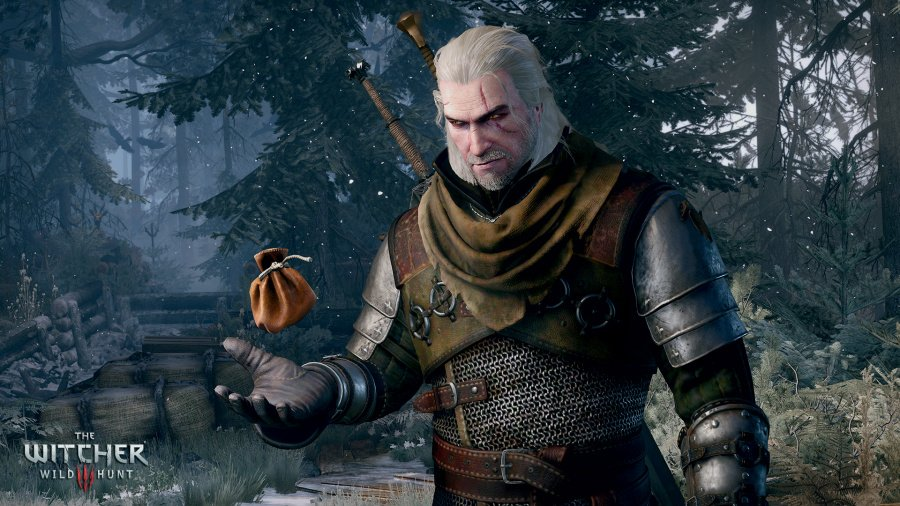 The Witcher 3: Wild Hunt Review - Screenshot 11 of 12