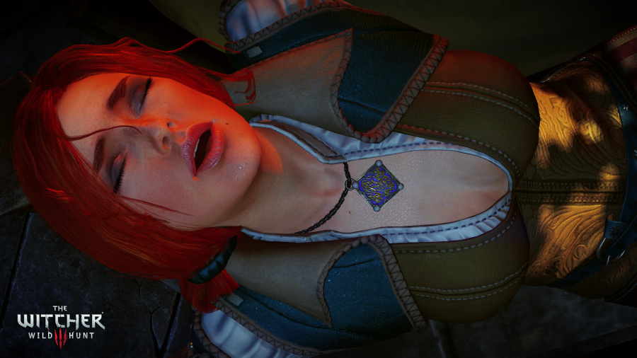 The Witcher 3: Wild Hunt Review - Screenshot 4 of 12