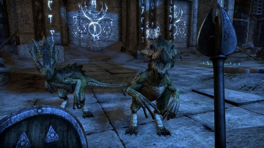 The Elder Scrolls Online: Tamriel Unlimited Review - Screenshot 8 of 11