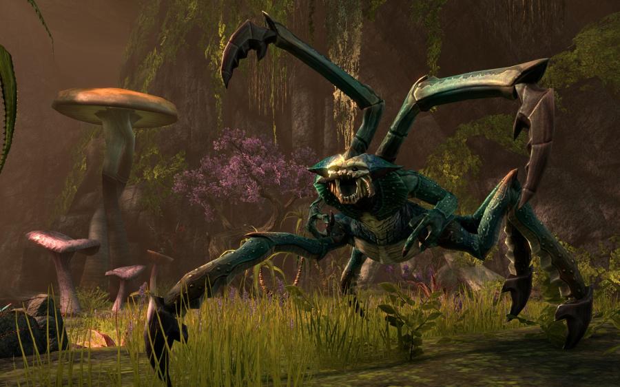 The Elder Scrolls Online: Tamriel Unlimited Review - Screenshot 5 of 11
