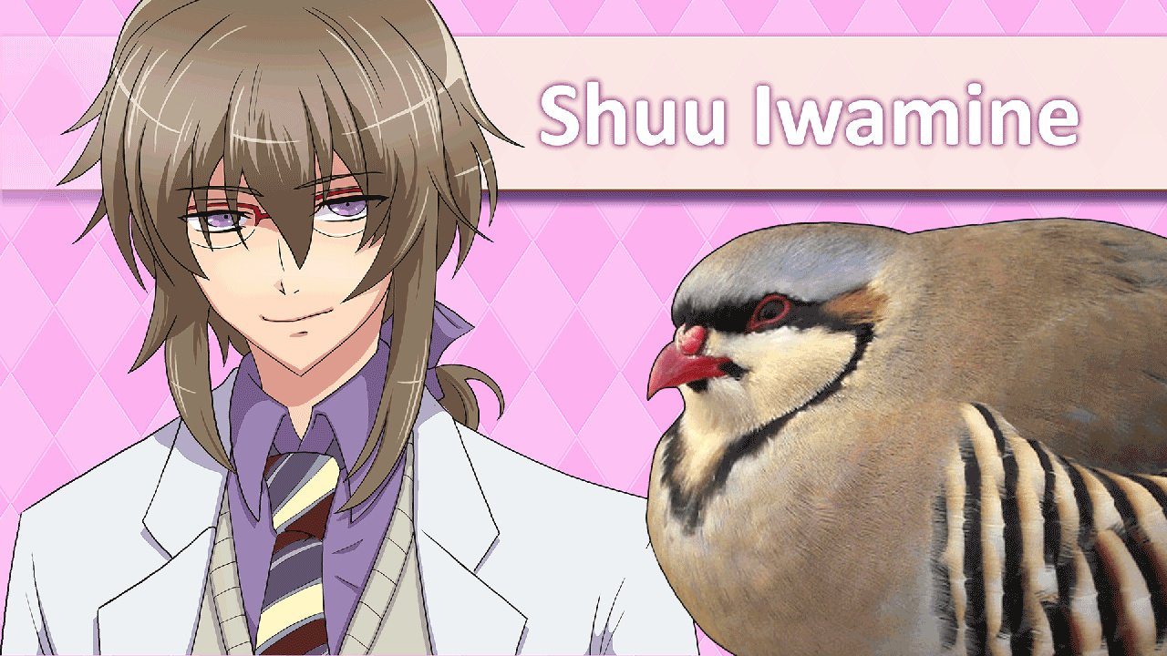 I Tried The Game In Which You Seduce Pigeons And It Was Traumatic