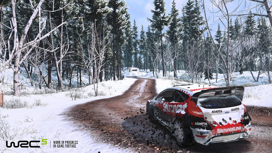 WRC 5 Review - Screenshot 2 of 3