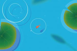 KOI Screenshot