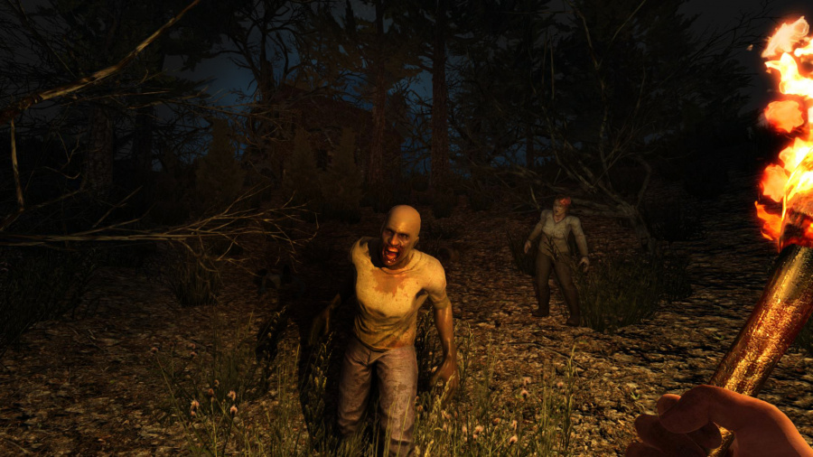 7 Days to Die Review - Screenshot 2 of 3