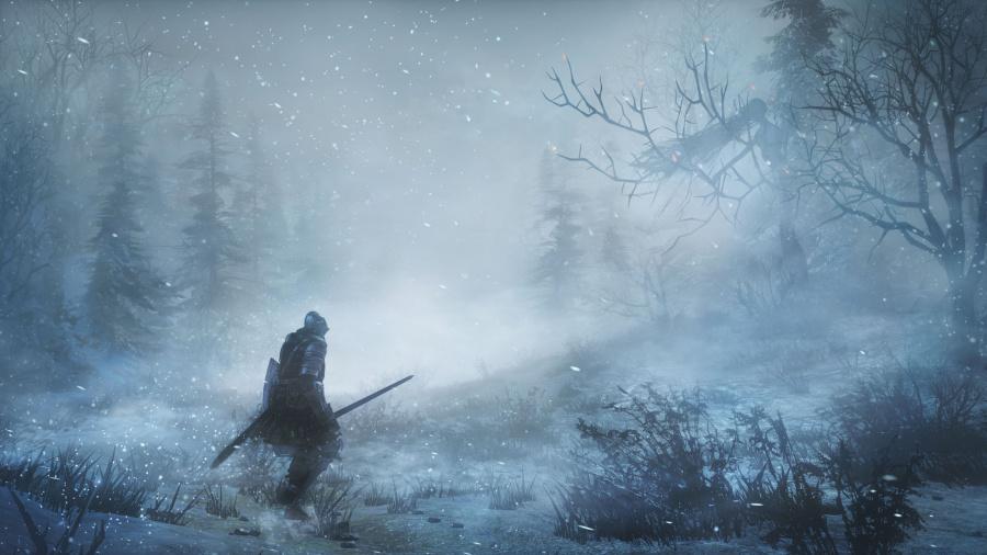 Dark Souls III: Ashes of Ariandel Review - Screenshot 2 of 3