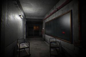 Dying: Reborn Screenshot