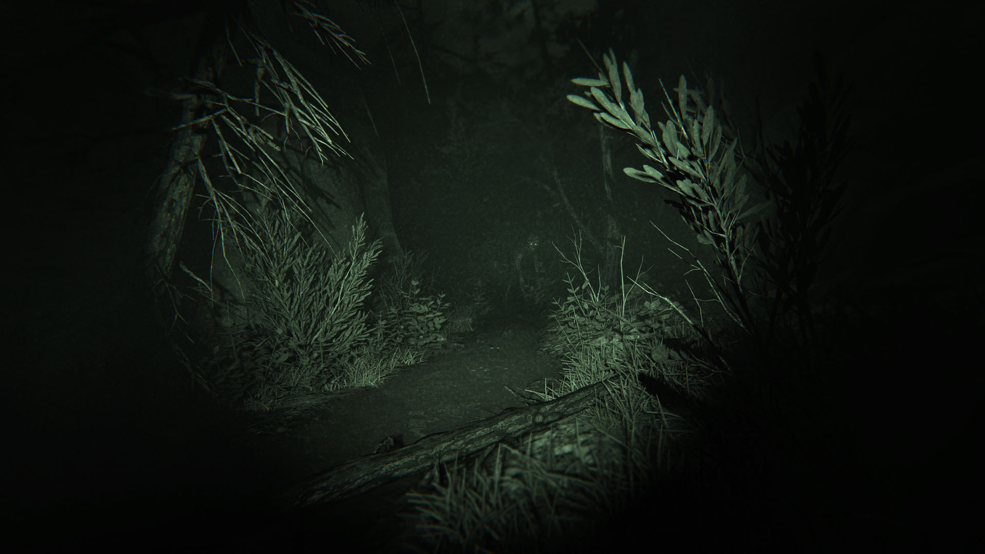 Outlast Ii Review Ps4 Push Square Trinity Screenshot 4 Of