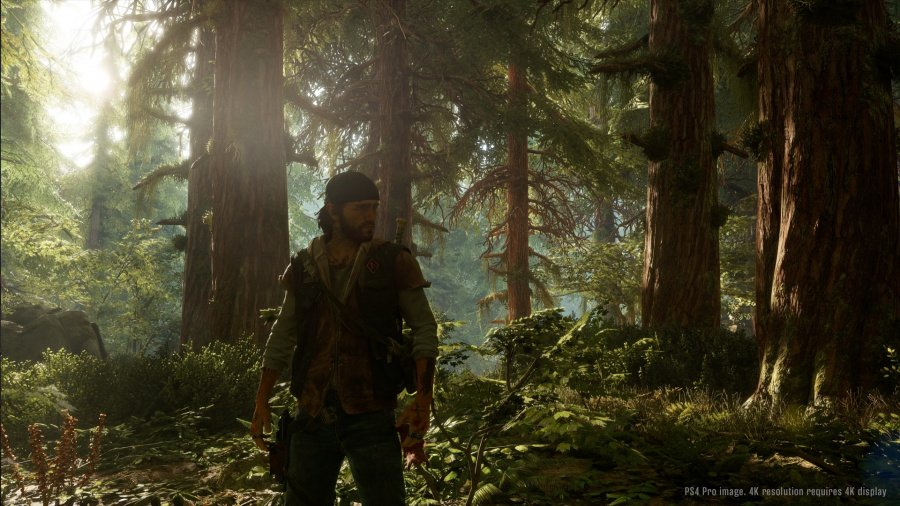 Days Gone Review - Screenshot 2 of 5