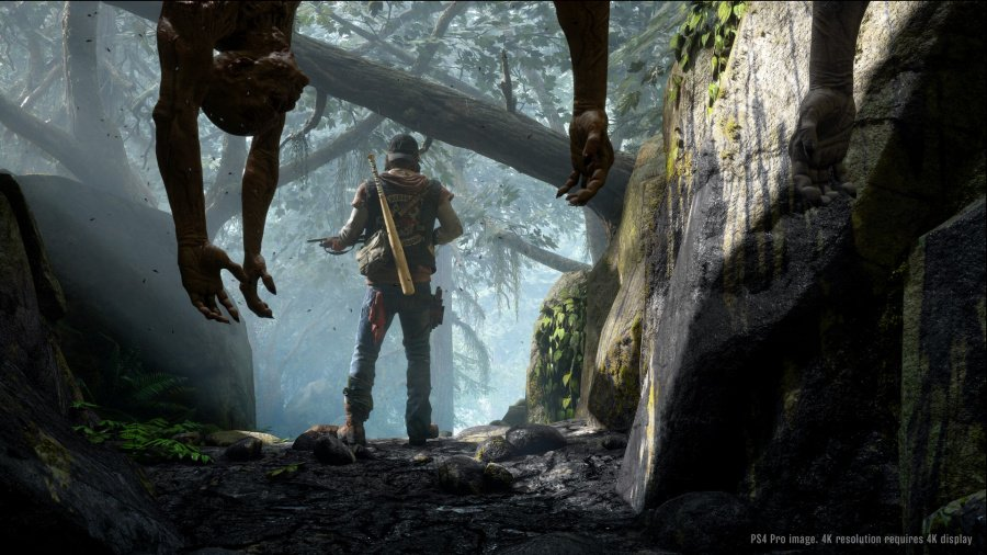 Days Gone Review - Screenshot 3 of 5