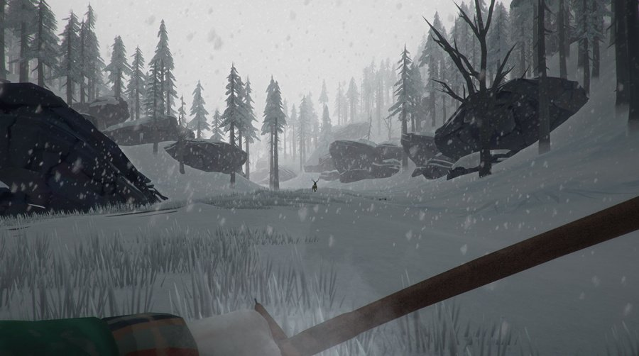 The Long Dark Review - Screenshot 3 of 4