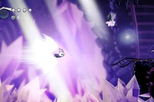 Hollow Knight: Voidheart Edition Screenshot