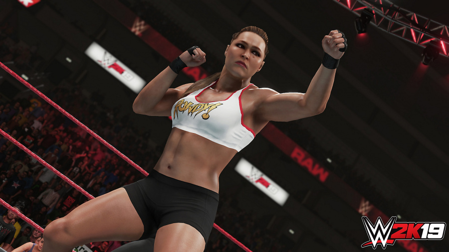 WWE 2K19 Review - Screenshot 1 of 4