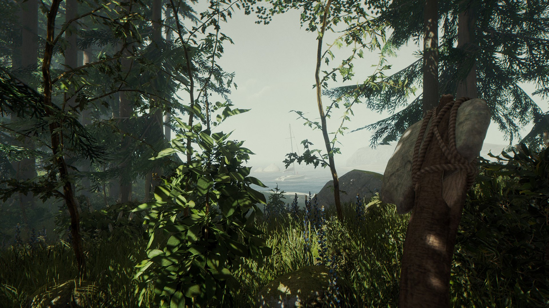 The Forest (PS4 / PlayStation 4) Game Profile   News ...