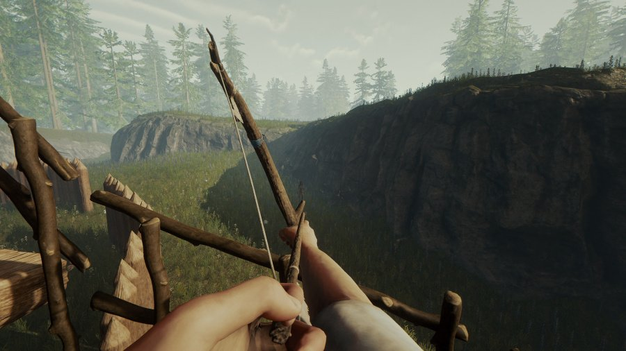 The Forest Review - Screenshot 1 of 3