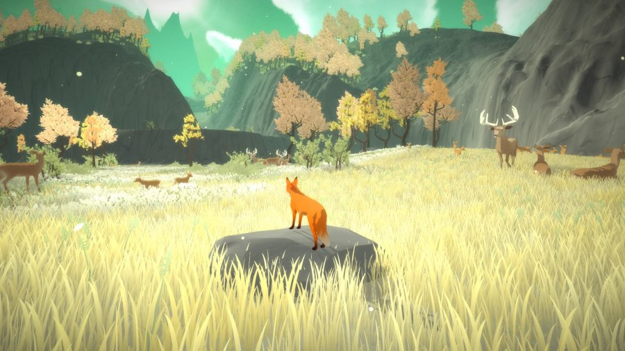 The First Tree Review - Screenshot 1 of 2