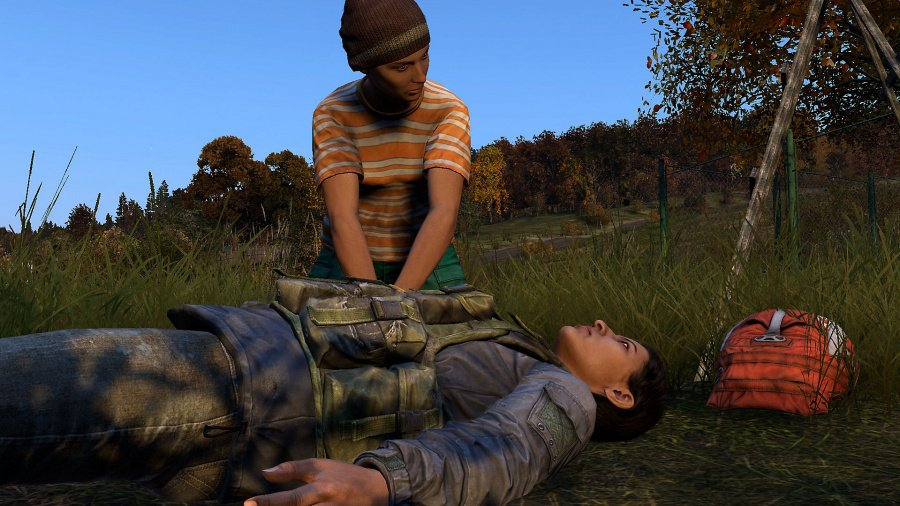 DayZ Review - Screenshot 4 of 4